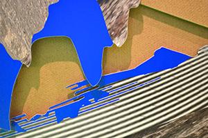 ANGL Image